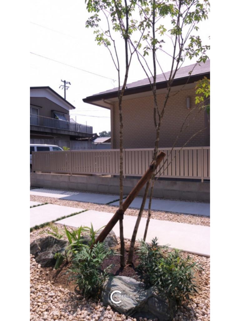 和モダンな庭園に調和するシンボルツリー(山採りの木)