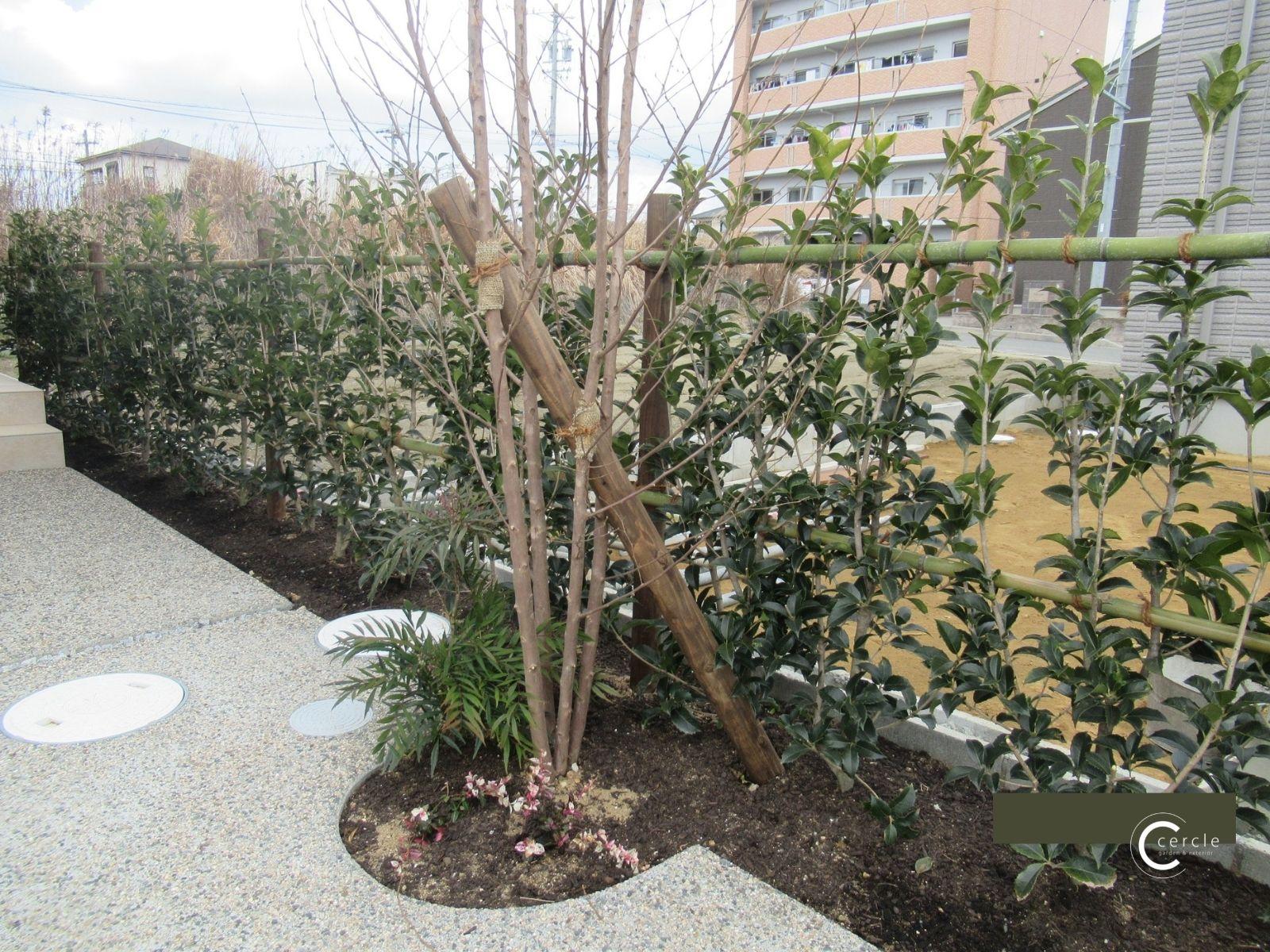 【鈴鹿市】シンボルツリーを活かして玄関を隠す